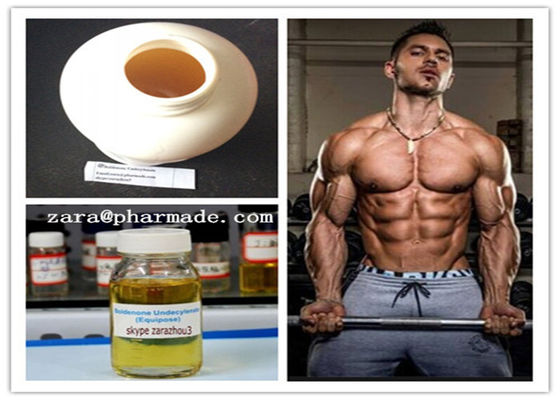 China Boldenone Undecylenate Muscle Building Steroids 13103-34-9 EQ Raw Steroids supplier