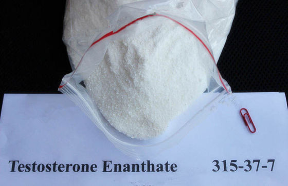 China Testosterone Enanthate Test En Anabolic Hormone Steroid Powder for Fitness supplier