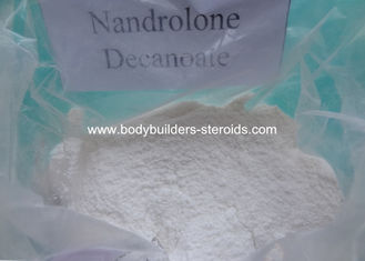 China Deca - durabolin Raw Powders Anabolic Deca 200 Nandrolone White Powder supplier