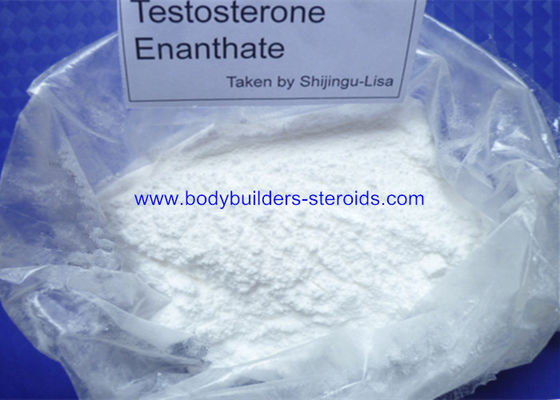 China Testosterone Enanthate Raw Powders Anabolic Hormone 315-37-7 To Lossing Fat supplier