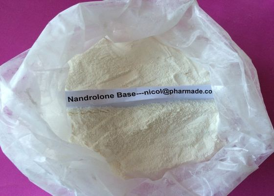 China Natural Nandrolone Base Muscle Building Steroids Anabolic Nandrolone Powder supplier