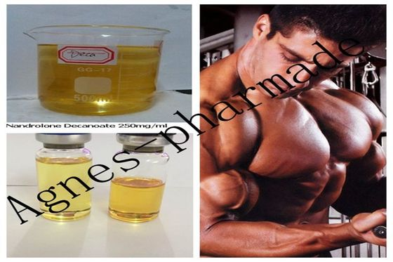 China Nandrolone Decanoate Injectable Steroid Solution DECA 250mg/ml Oil supplier