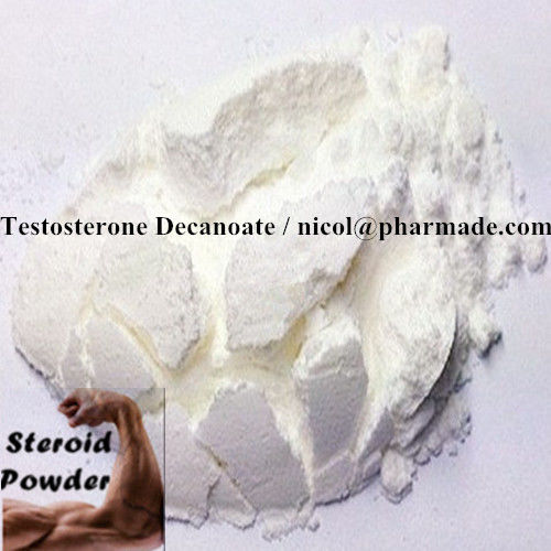 Testosterone Decanoate Raw Testosterone Powder Anabolic Steroid Hormone For Gain Muscle